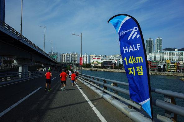 2019釜山海マラソンハーフ14km地点