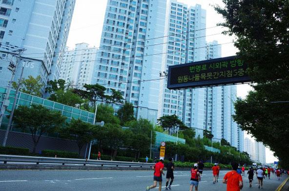 2019釜山海マラソン