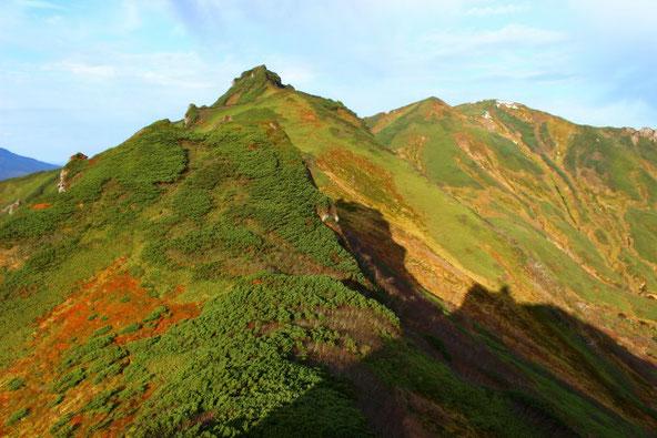 ニセイカウシュッペ山とアンギラス