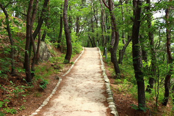 アプサン展望台への道