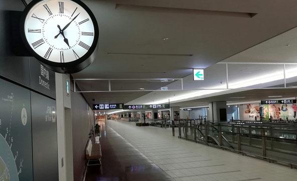 新千歳空港国際線ターミナルの朝