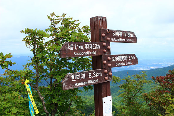 韓国大邱八公山