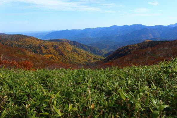 平山登山道の紅葉