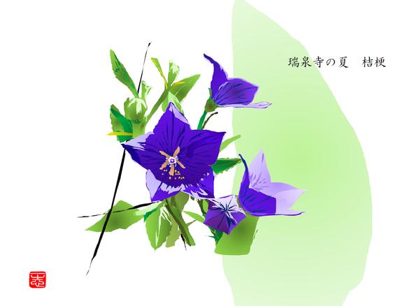 桔梗 2016/08/26制作