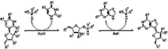 Transglycosylation reaction