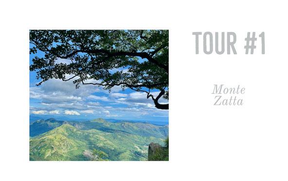 Monte Zatta, Ligurien, Italy, Parco Aveto, Naturpark Veto