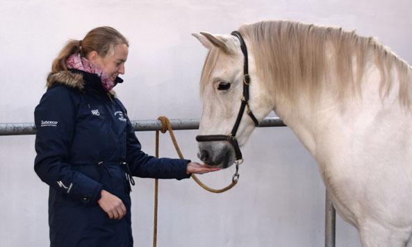 Tanja Mußbach Tierphysiotherapie Chiropraktik Föhrden-Barl