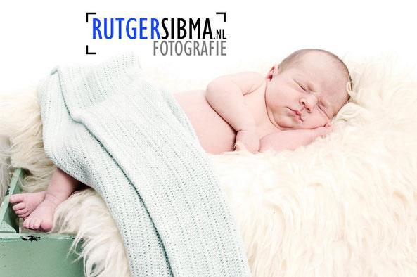 newborn fotografie Hengelo