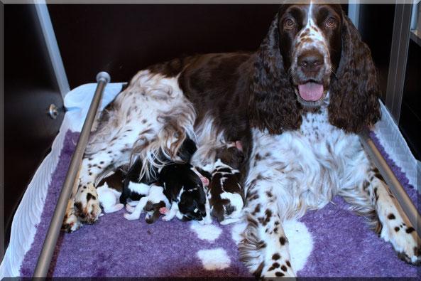 Die stolze Mama mit ihren bunten Zwergen...