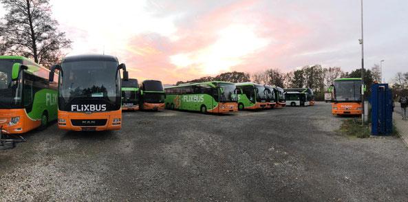Flixbus-Busse von der Firma Gradliner für die fernen Reisen