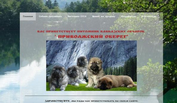 Питомник кавказских овчаров Приволжский Оберег