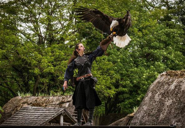 Photo, aigles-chateau-thierry.com.