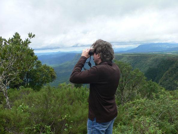 Drakensberge, God's Window, Blick Richtung Kruegerpark