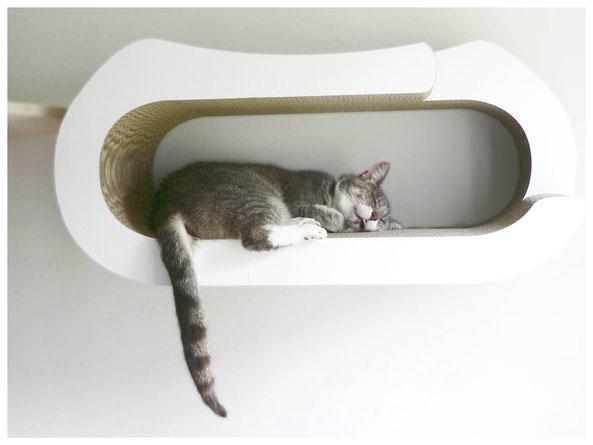 Schlafende Katze Schlafplatz Wand Cat-On Karton weiß