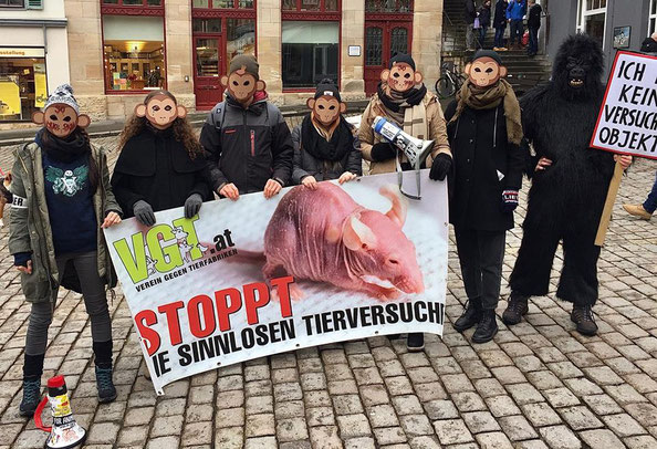 VGT Vorarlberg - Sandy P. Peng Blog