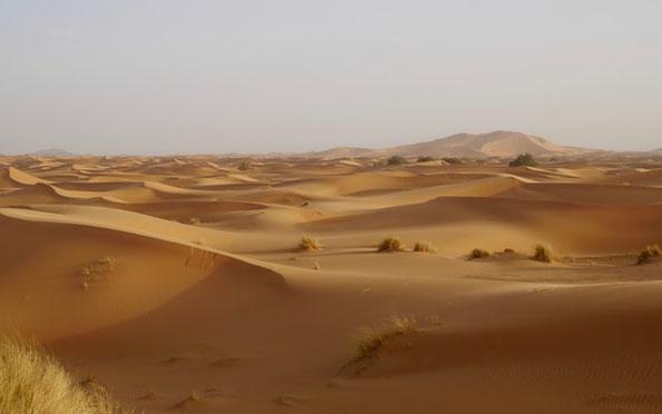 Le prophète Jérémie définit le désert : une terre aride et pleine de ravins, une terre où règnent la sécheresse et l'ombre de la mort, une terre par où personne ne passe et où n'habite aucun homme. Le désert est un milieu extrême et hostile à la vie.