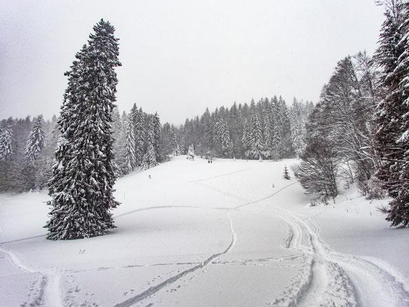 Menschenmassen suchten wir vergebens. In der Ferne erkannten wir zwei Skitourengeher, weiter nichts.