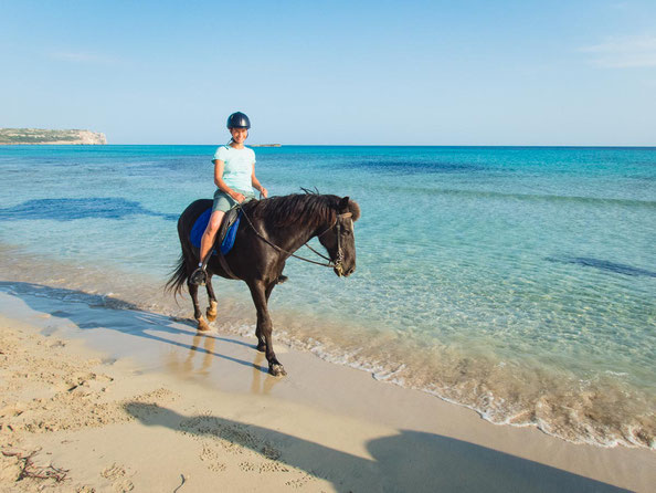 Was für ein toller Kontrast - das schwarze Pferd vor dem türkisen Meer.