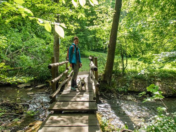 Ich liebe kleine Holzbrücken und so ziemlich auf jeder muss angehalten werden um ein Foto zu schießen.