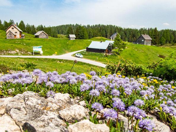 6-Seen-Wanderung im Salzkammergut - dem größten Seenhochplateau in Mitteleuropa. Start ist bei der Tauplitzalm.