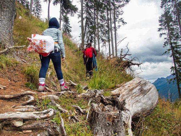 Über den steilen Waldpfad ging es hinauf zur Ludwigsburger Hütte