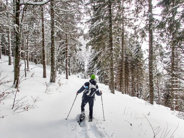 Auf unberührten Wegen ging es durch den zauberhaften Schwarzwald.