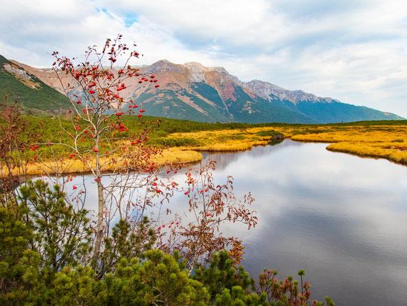 Ich liebe dieses Foto mit den warmen Herbstfarben der Natur.
