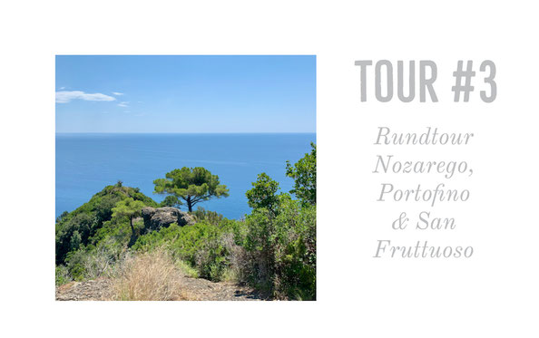 Nozarego, Portofino, San Fruttuoso, Ligurien, Italy