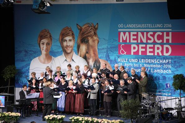 Eröffnung Landesausstellung`16, Reithalle, Pferdezentrum Stadl Paura  Foto Wolfmayr