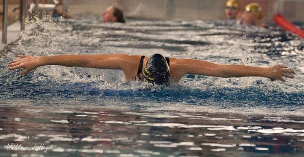 Schwimmen (Bild: Wiebke von der Heyde)