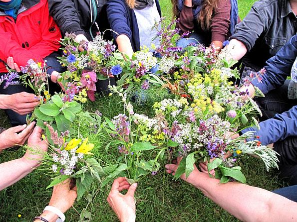 Wildkräutersträußchen Kräutergarten www.kraeuter-entdecken.de
