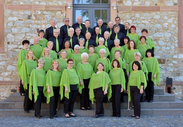 Der Gemischte Chor Frohsinn 2012