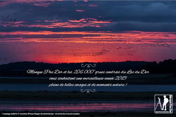 Manque Pas Der et les 206000 grues cendrées du lac du Der vous souhaitent une merveilleuse année 2015 peine de belles images et de moments nature !