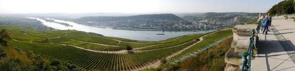 Blick vom Niederwalddenkmal auf Rüdesheim, den Rhein und Bingen