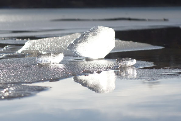 die Frühlingssonne lässt das Eis auf dem See erstrahlen (Foto: J. Bartsch)