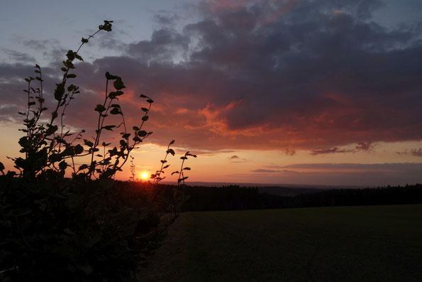 Sonnenuntergang vom Bezelberg / Vogtland, 01.09.2021 (Foto: J. Bartsch)
