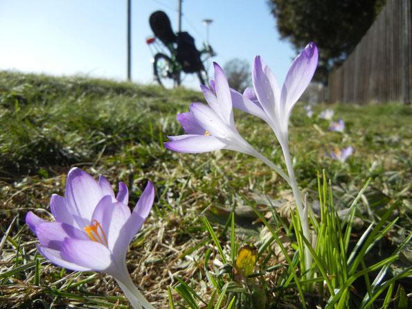 Die Radtourensaison kann beginnen (Foto: H.Bartsch)