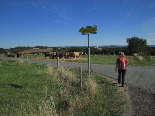 Frühherbstliche Wanderung in Thüringen