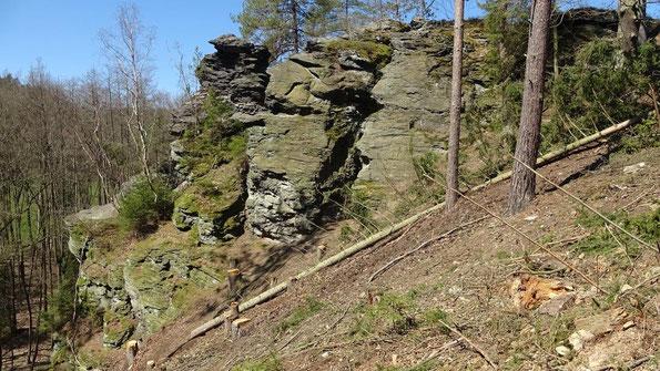 Kappelstein SO-Seite im Unterem Göltzschtal-Vogtland, nach Forstarbeiten freigestellt (Foto: W.Roth)