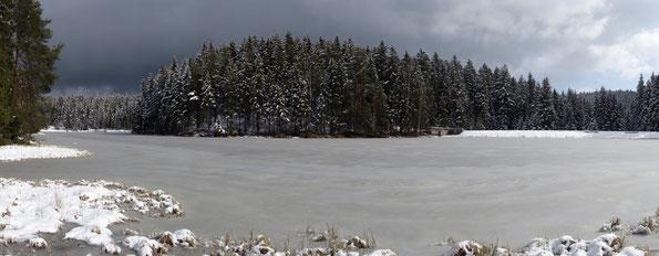 Blick über den winterlichen Vogtlandsee