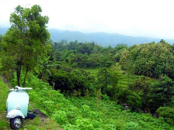 Vespa vor einem grünen Bergtal