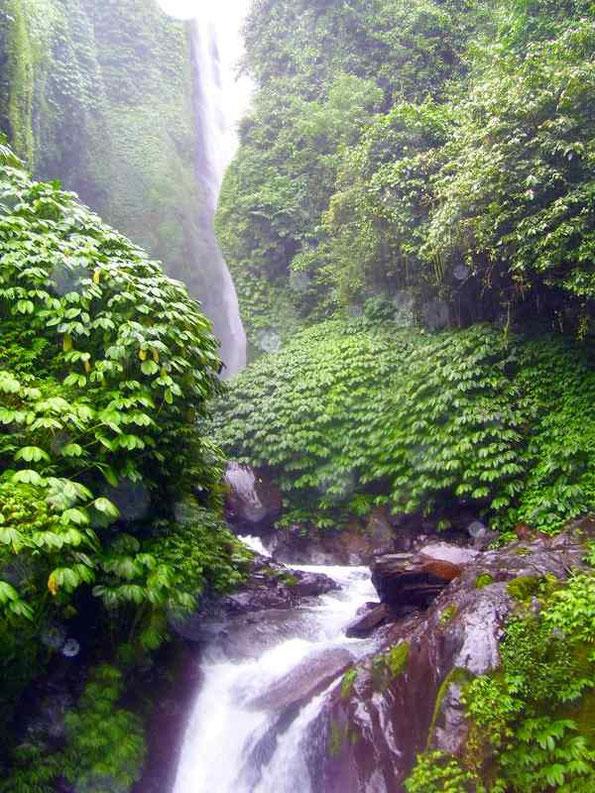 imponierendes Bild vom Wasserfall