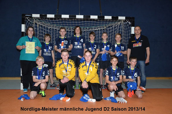 männliche D-Jugend 2013 / 2014