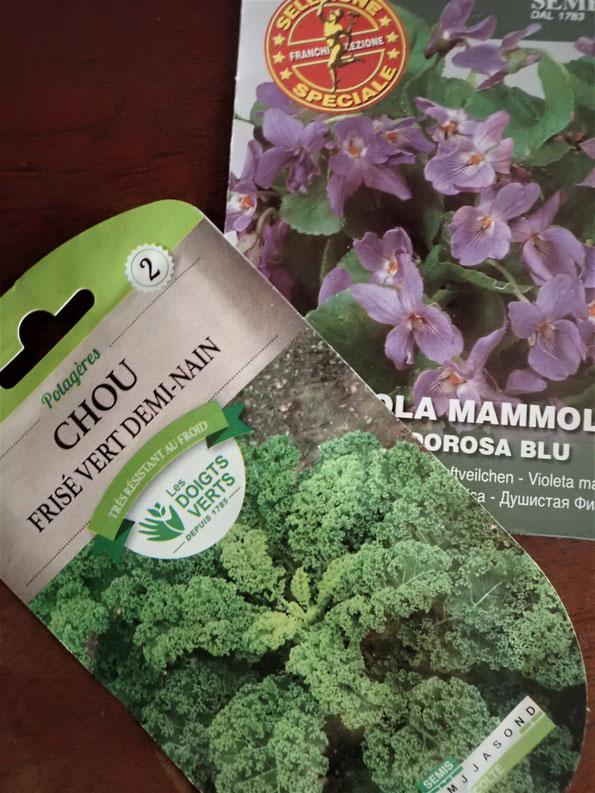 固定種の無農薬栽培の野菜作り教室・さとやま農学校@すどう農園