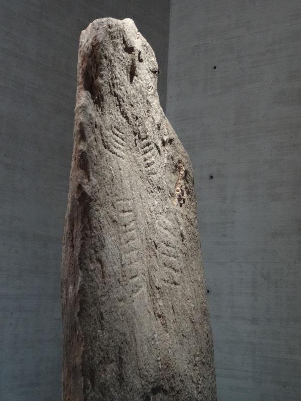 Piedra Menhir del Museo Latenium, Neuchatel, Suiza, edad 8000 años... wow...