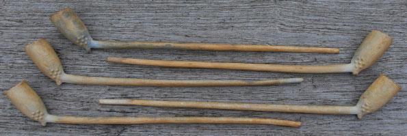 Complete, onbeschadigde pijpjes met stippen versiering. Steellengte ca 24/25 cm. Zee vondst noord nederland