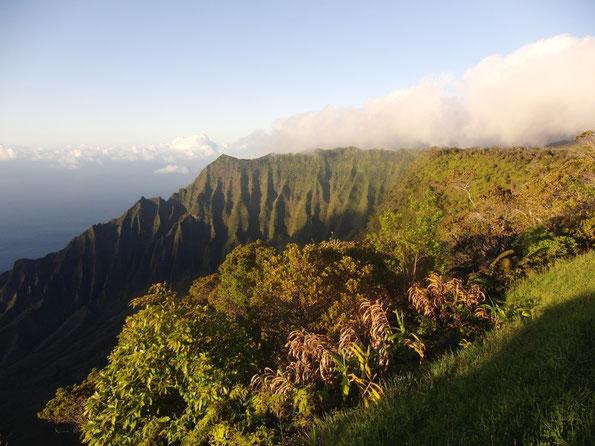 Das Kalalau Tal an der Napali Küste auf Kaua'i, der grünen Insel von Hawai'i.