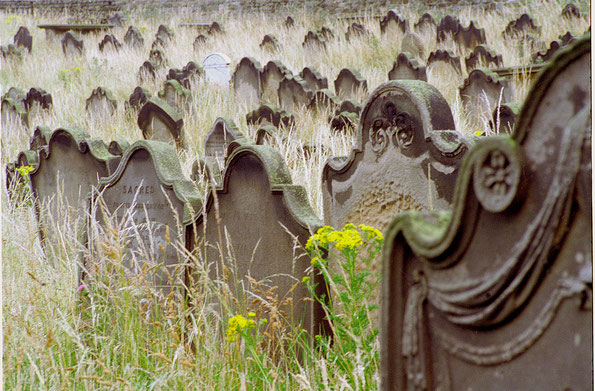 Friedhof in Whitby, Yorkshire