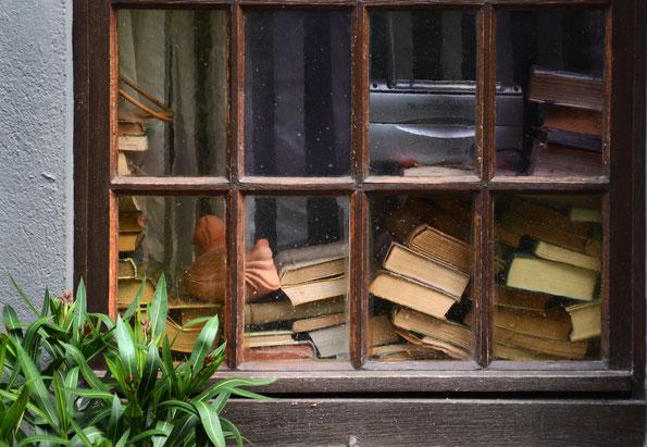 Lesestoff für kalte Herbsttage