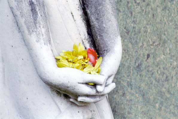 Blumengrüße ins Jenseits